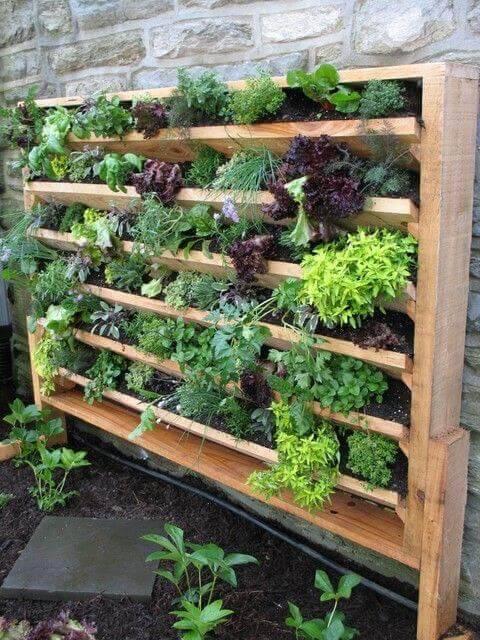 jardim suspenso com estrutura de madeira ervas