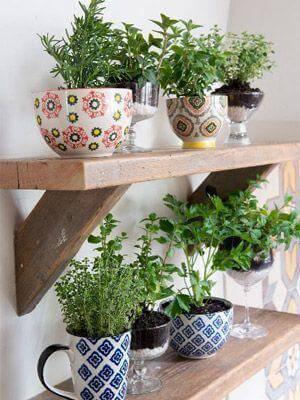 jardim suspenso em canecas e vasos de vidro