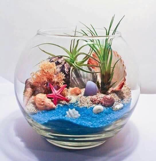 terrario colorido fundo do mar com planta