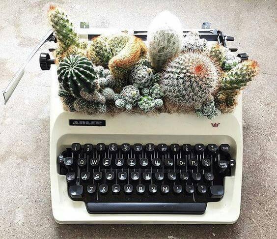 terrario criativo em maquina de escrever
