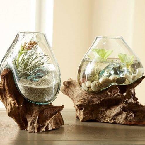 terrario e aquario em tronco de madeira