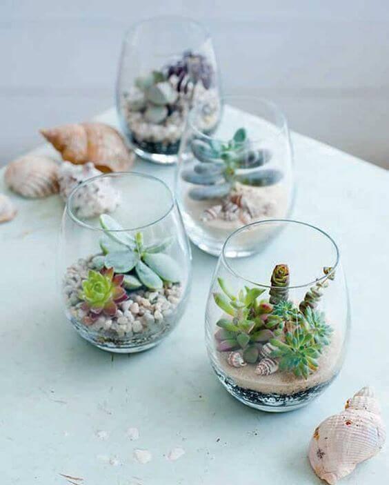 terrario em copos com suculenta e conchas