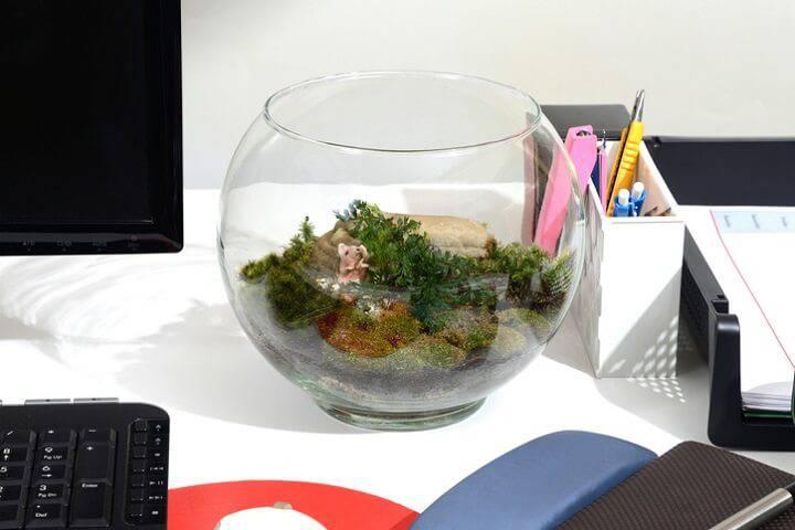 terrario mesa de trabalho musgo