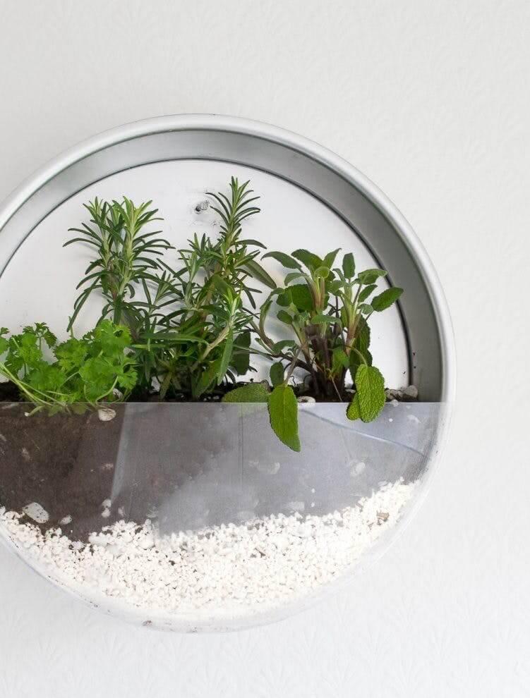 horta suspensa com design