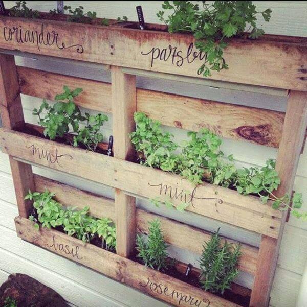 horta suspensa com pallet gardens-herbs