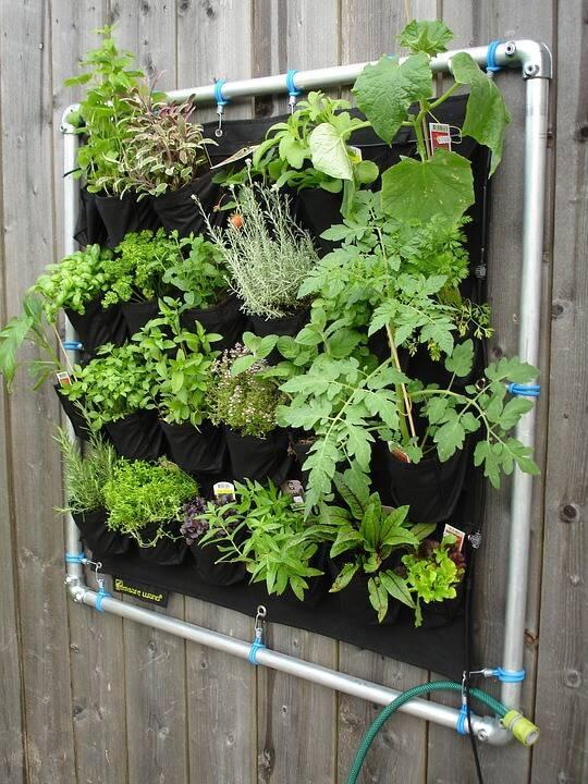 horta suspensa com sistema de irrigação