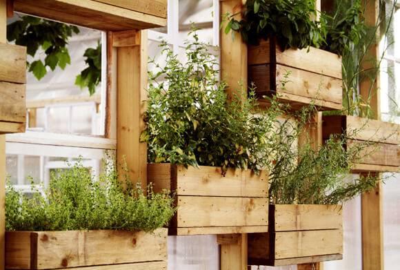 horta suspensa em pequenos caixotes