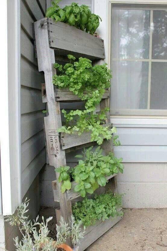 horta suspensa pallet-herb-gardens