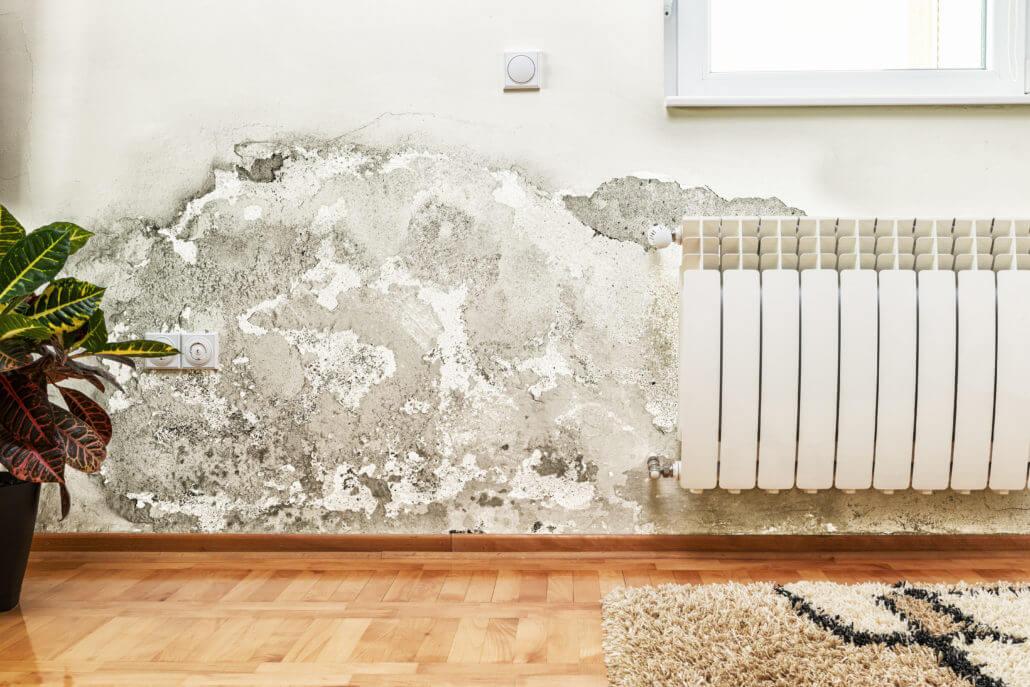 como tirar umidade da parede mofada