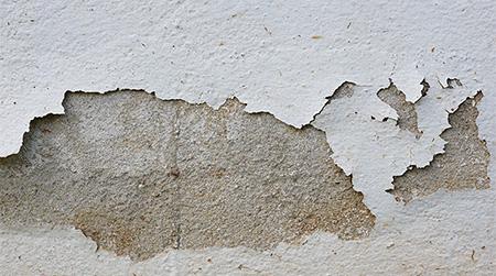 como tirar umidade da parede que está descascando