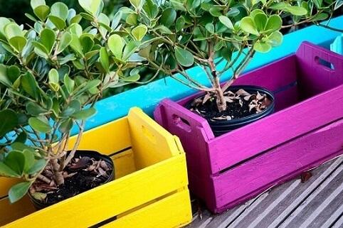 Caixote de feira de madeira colorido usado como cachepô Projeto de Marina Makowiecki