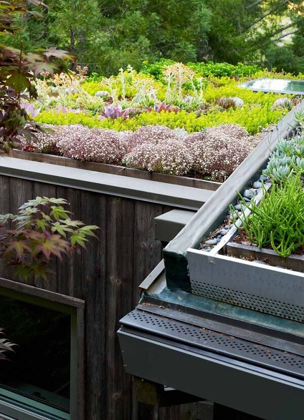 As pedras devem estar posicionais na lateral do telhado verde para facilitar a drenagem