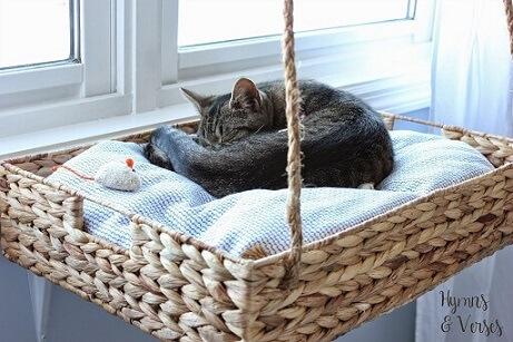 Cama suspensa para gato