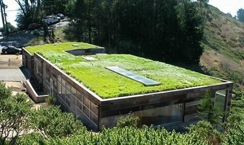 Casa com telhado verde