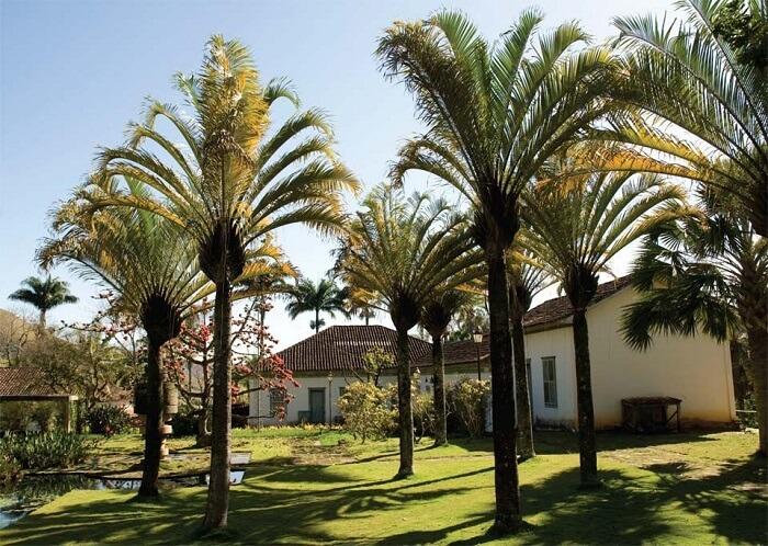 Casa de fazenda com paisagismo inspirado nos projetos de Burle Marx