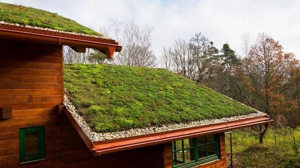 Casa de madeira com telhado verde charmoso