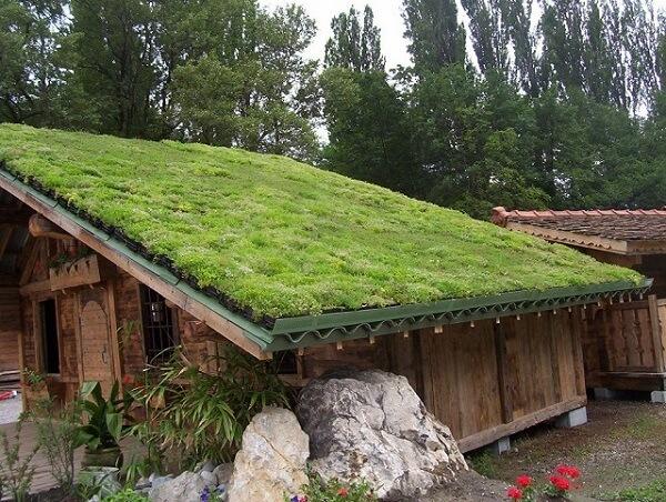 Chalé de madeira com telhado verde