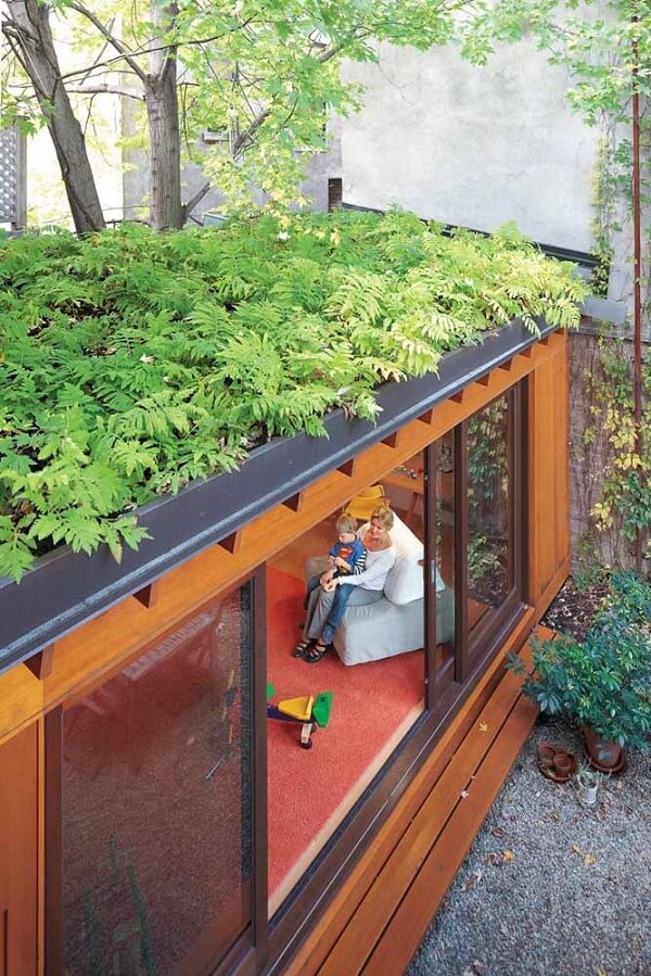 Folhagem rasteira para o telhado verde