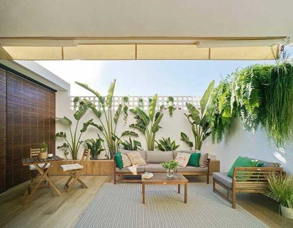 Modelos de jardim com bananeiras e samambaias
