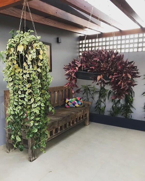 Modelos de jardim com plantas pendentes