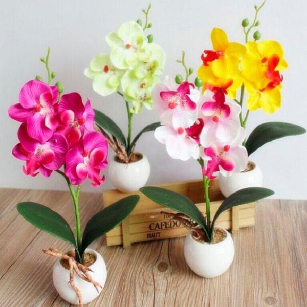 Orquídeas coloridas e artificiais decoram o ambiente