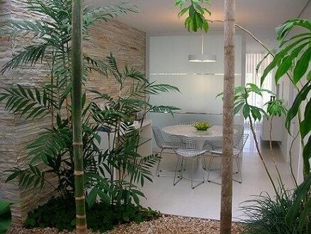 Plantas para jardim de inverno Projeto de Alexandre Freitas Santos
