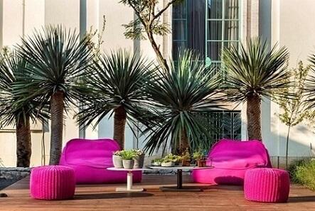 Plantas para jardim em decoração com puff rosa Projeto de Daniel Nunes Paisagismo