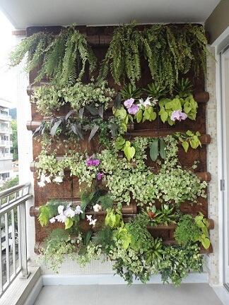 Plantas para jardim vertical Projeto de Ana Flávia Teixeira