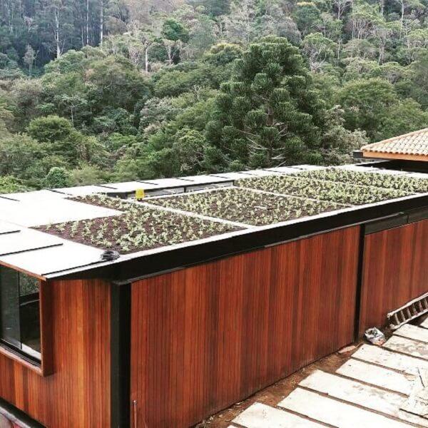 Que tal cultivar uma horta no telhado verde?