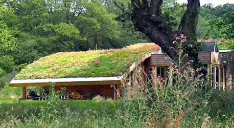 Telhado verde com flores