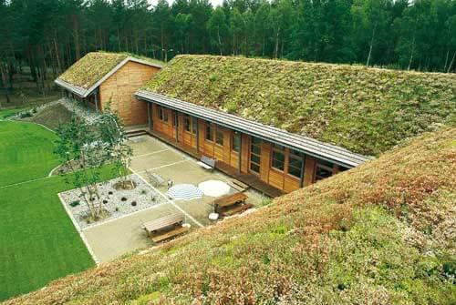 Telhado verde em área com bastante vegetação