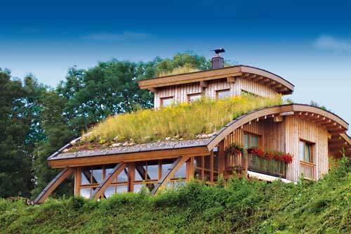 Telhado verde sobre casa de madeira
