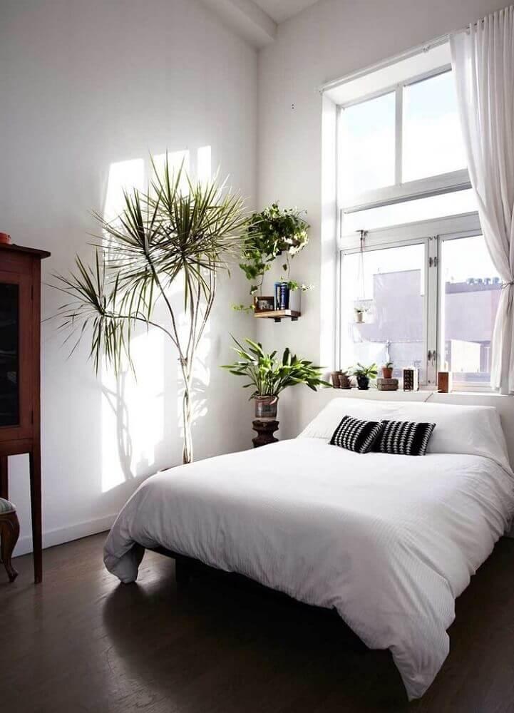 decoração simples com plantas