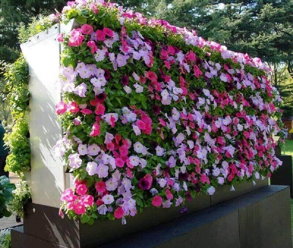 flores pequenas e coloridas para jardim vertical