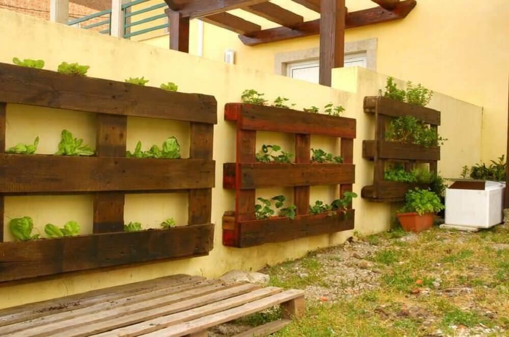 horta com paletes