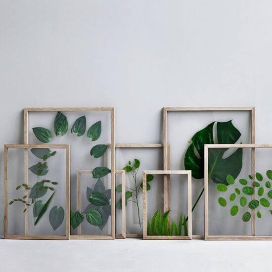 quadro de folhas com plantas diversas