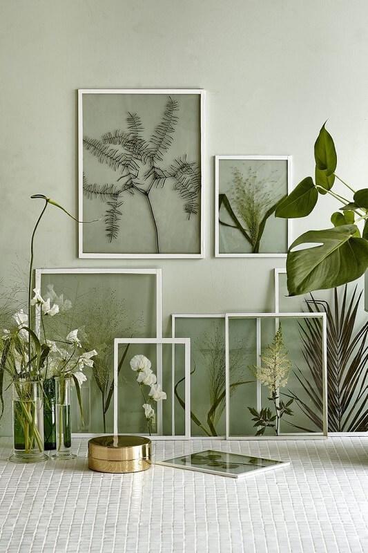 quadro de folhas diversas