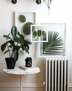 quadro-de-folhas1