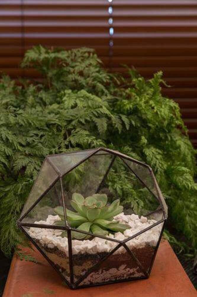 terrário modelos de jardim