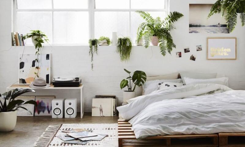 Cama de pallet baixa em quarto com plantas