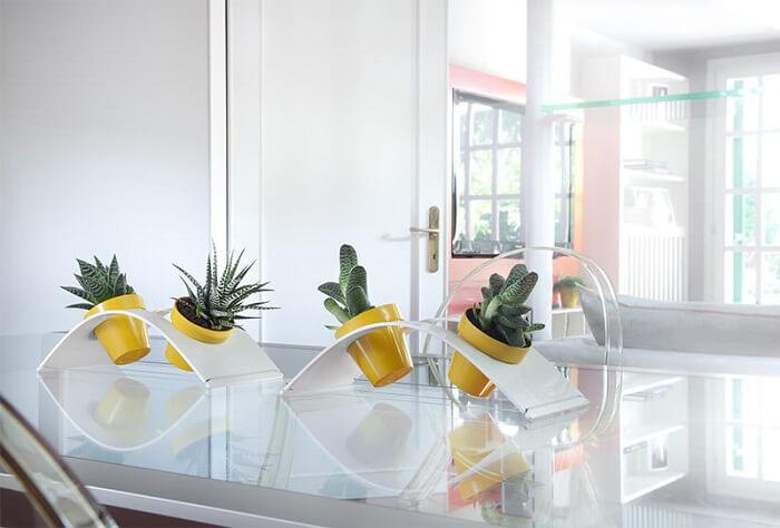 Vasos de plantas decora o centro da mesa da sala de jantar
