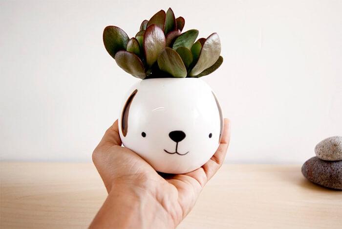 Vasos de plantas delicado de animal