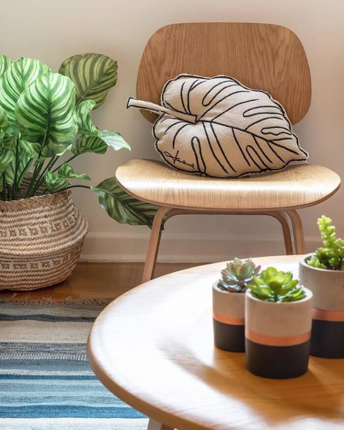 Vasos de plantas pequeno decora a mesa de centro da sala