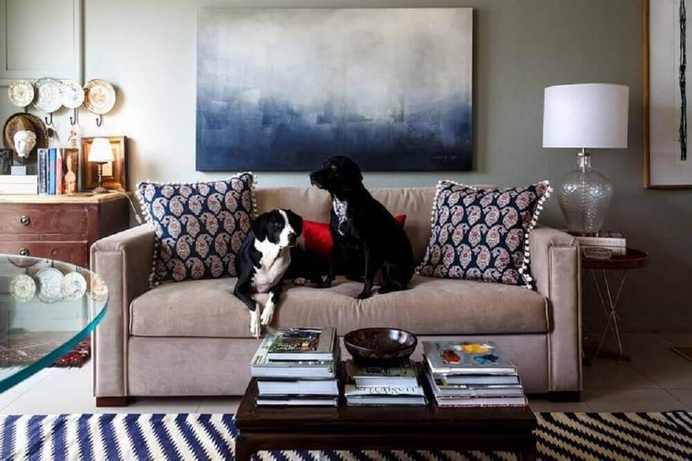 casa com animais de estimação