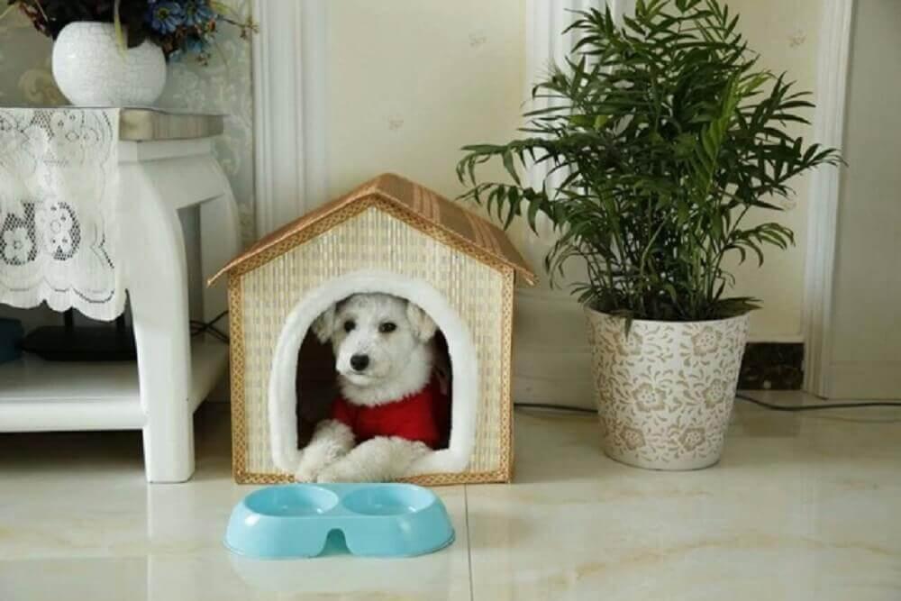 casinha de cachorro na decoração