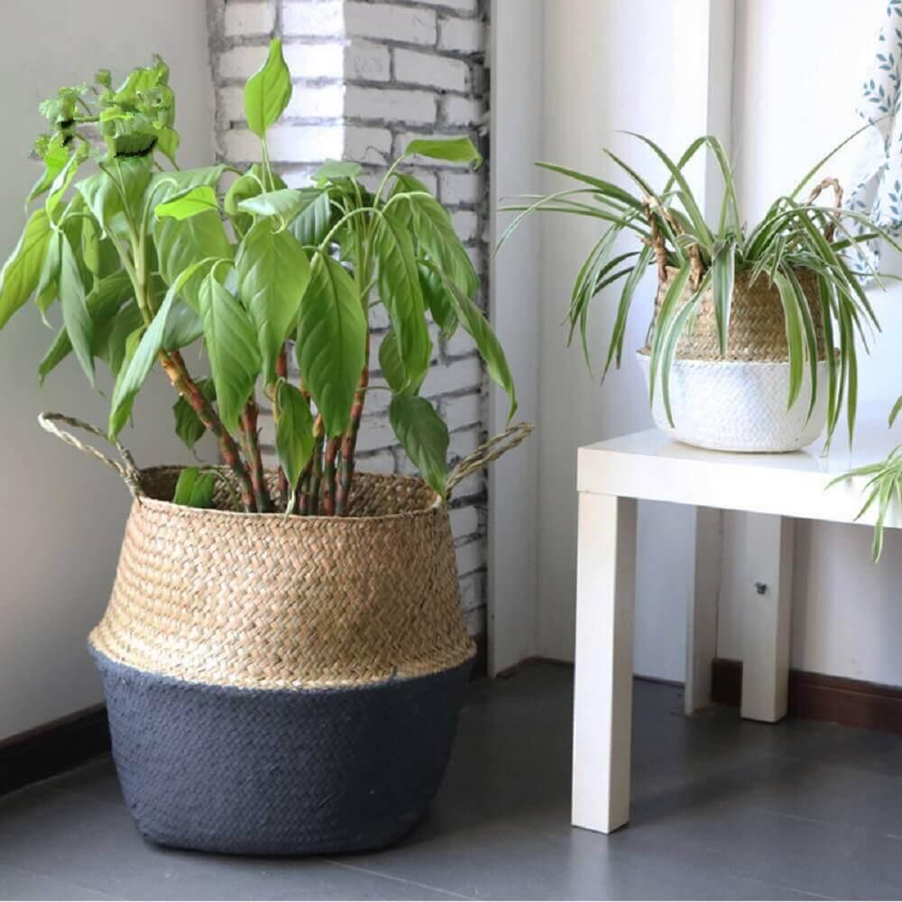 cestos como suporte para vasos de plantas