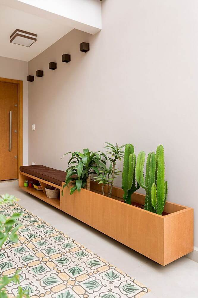 vasos de plantas com cactos decoração