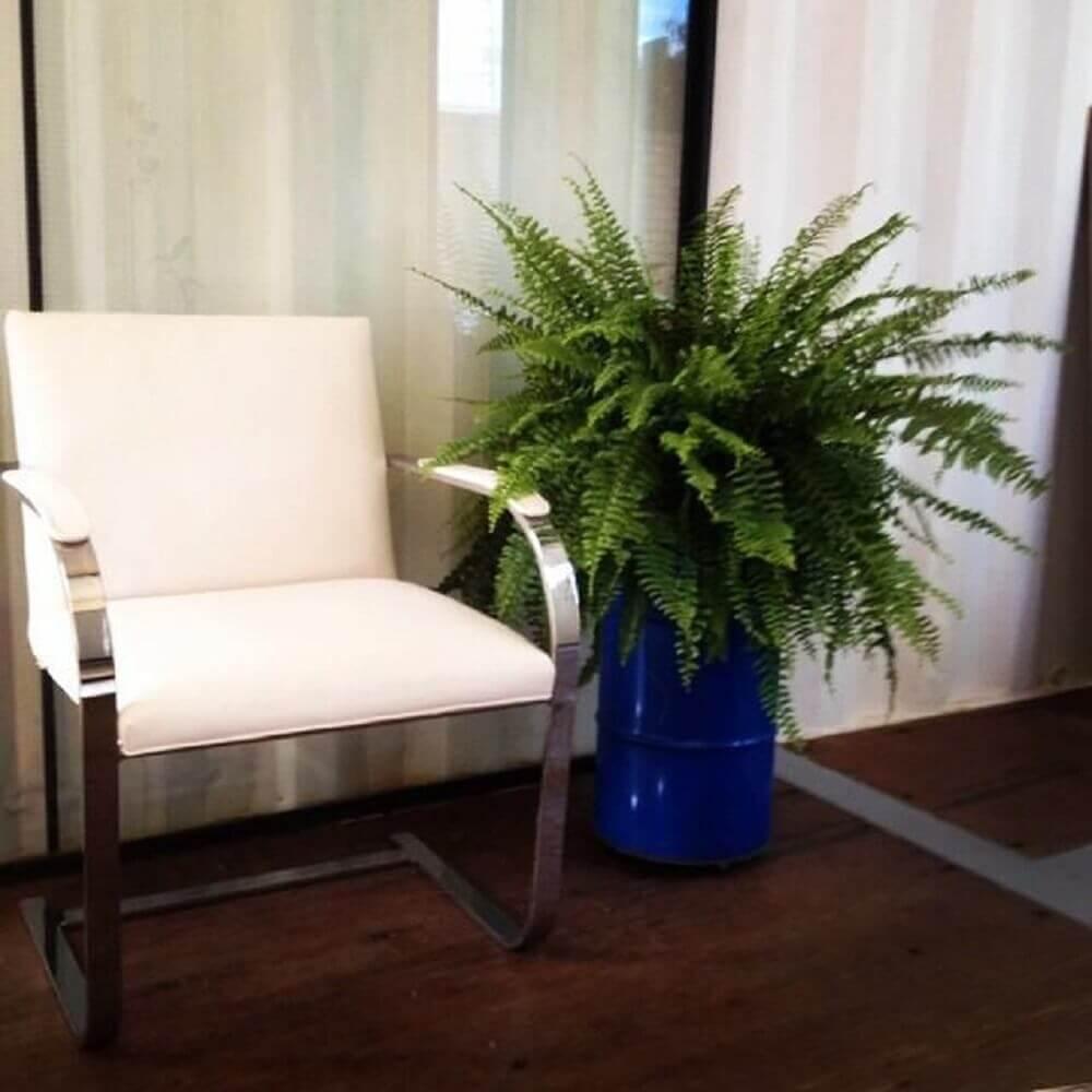 decoração com vasos de plantas para sala