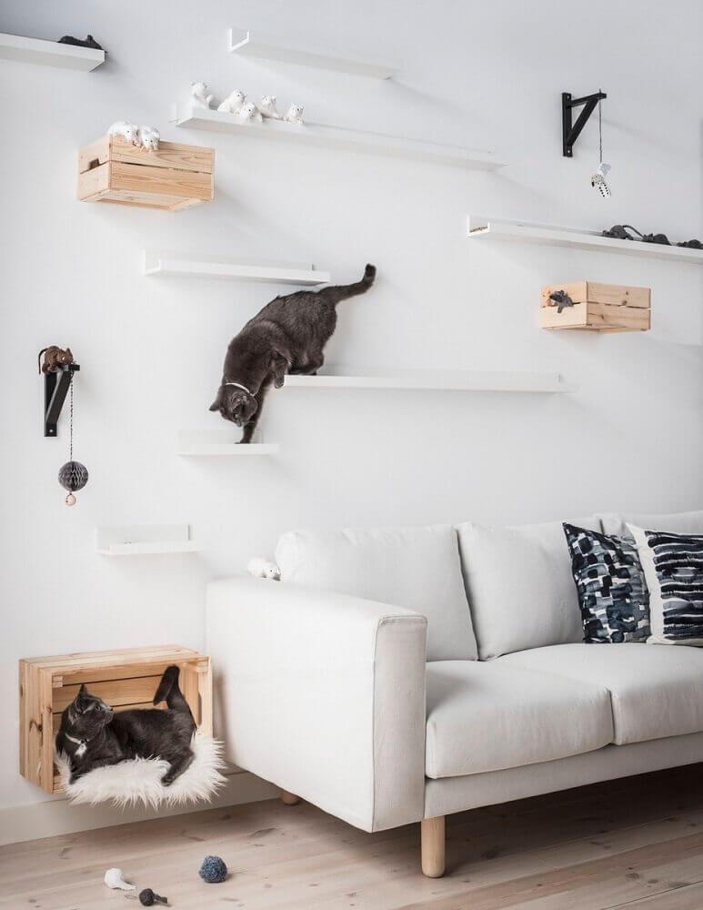 evite manchas de patinhas nas paredes