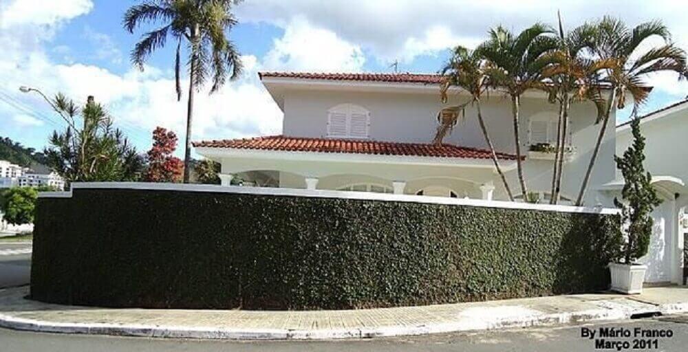 inspiração para fachada de muro verde